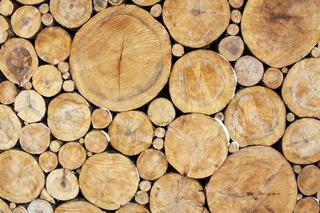 Odkup lesa, marec 2014