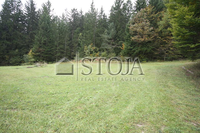 Land for Sale - RAKITNA