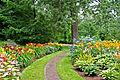 Vrste zasaditev cvetličnih gred