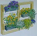 Kako se znebite radovednih pogledov v vrtu