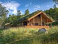Prednosti zelenih streh in zidov